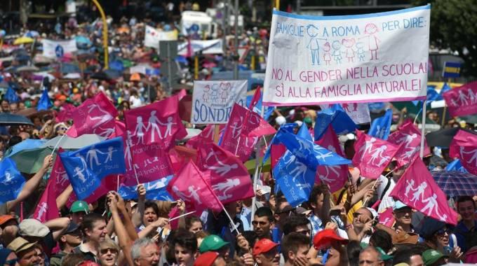 Family day, manifestazione anti gender (Ansa)