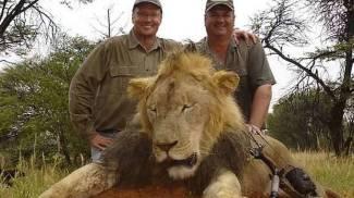 Il dentista americano che ha ammazzato il leone Cecil ora si scusa