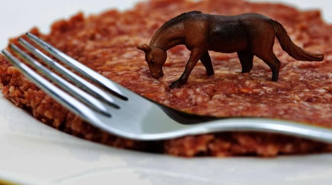 Cosa c'è nel piatto? photo Olycom