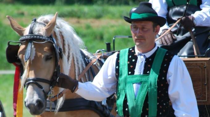 Convegno Mondiale cavallo Haflinger 2017