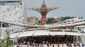 Expo, con la Triennale riapre il sito: 6 mostre e un orto
