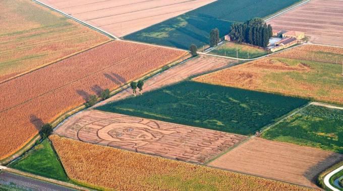Land art, dedicata al Giubileo l'opera 'dipinta' col trattore