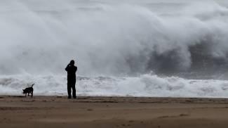 Onda gigante risucchia due cani, i proprietari si gettano in acqua