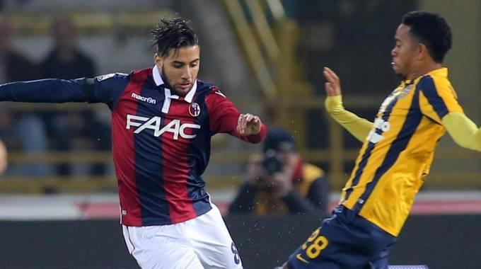 Bologna, Donadoni carica la squadra: