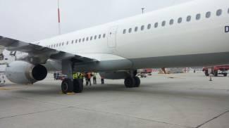 Uccelli risucchiati dai motori, attimi di panico  sull'aereo