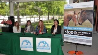 Truccazzano, proposta di legge contro la macellazione dei cavalli