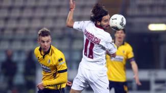 Calcio, il Livorno insegue la salvezza. E già pensa alla sfida col Perugia / Twitter