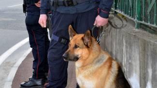 La ciclabile 'ostaggio' di un cane: arrivano denunce per gli assalti