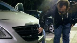 Capriolo investito da un'auto in via Pancalducci