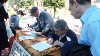 Alberi della Malatestiana, superate tremila firme
