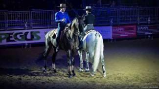 Cavalli a Roma: l'ultimo ciak di sport e divertimento