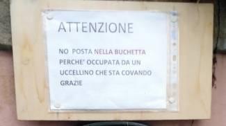 Il cartello che avvisa il postino