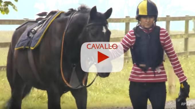 Megalala, a 16 anni galoppa come un giovane! © YouTube Racing Post