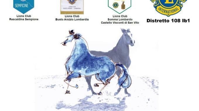 Alla scuderia san gallo di casorate sempione con i lions per l 39 autismo - San vito a tavola ...