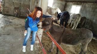 Guardie Zoofile Oipa: pronti a dare una mano anche con i cavalli