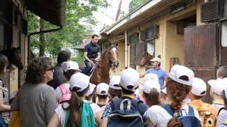 Bimbi a San Siro: per conoscere i cavalli e scoprire l'ippodromo