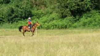 Campionati Italiani Endurance Pony: Oro alla Sardegna