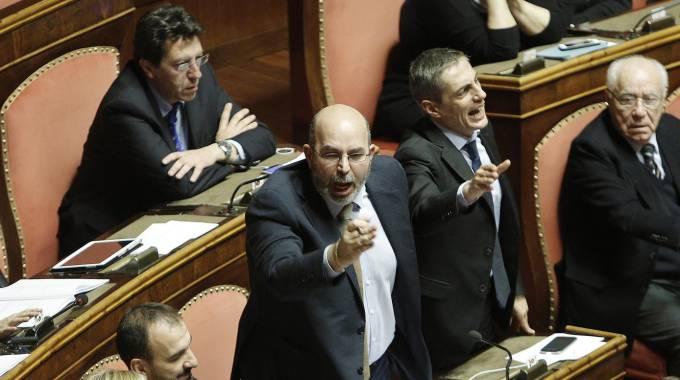 I senatori M5S (Airola e Crimi) gridano in Senato (Ansa)