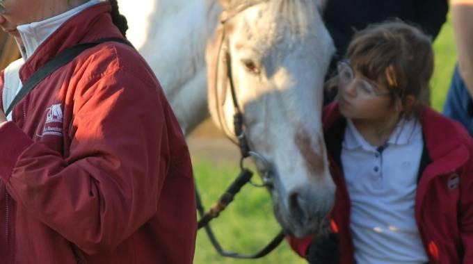 Una bimba con il suo pony