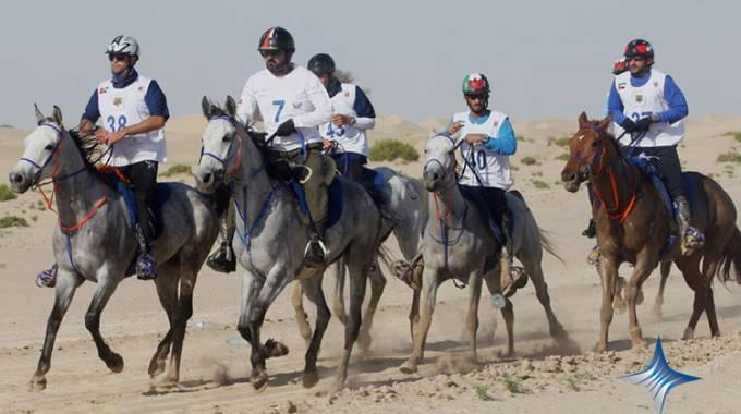 boldenone horses