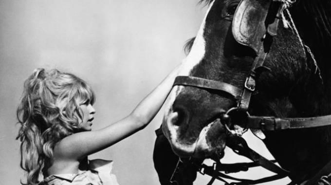 Brigitte Bardot in compagnia dei suoi amati cavalli
