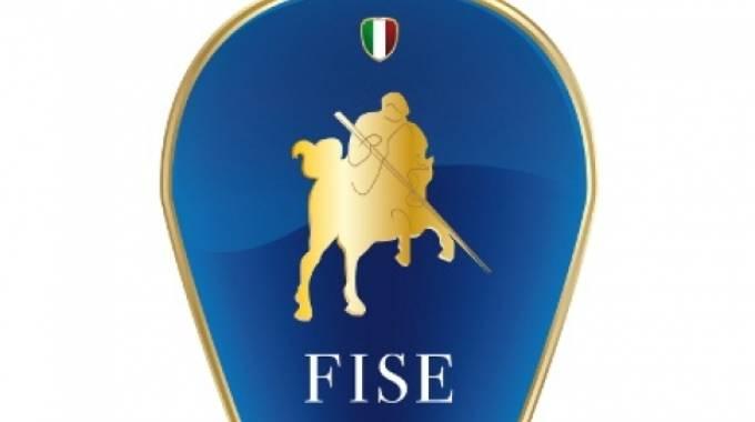 Il logo della Fise